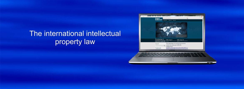 5_internac_law